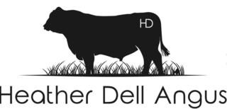 HEATHER DELL ANGUS BULL SALE - ROTORUA