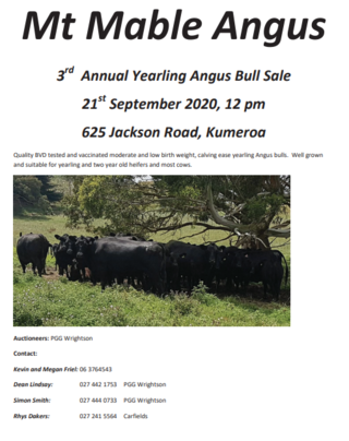 MT MABLE 3RD ANGUS YEARLING BULL SALE