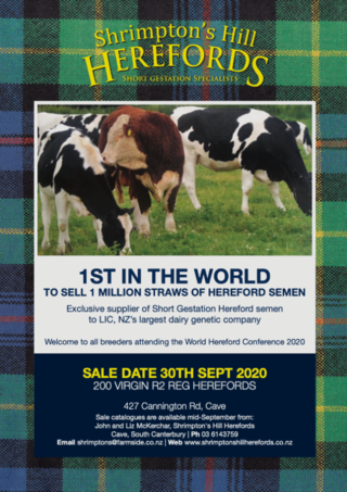 SHRIMPTON'S HILL HEREFORDS SALE