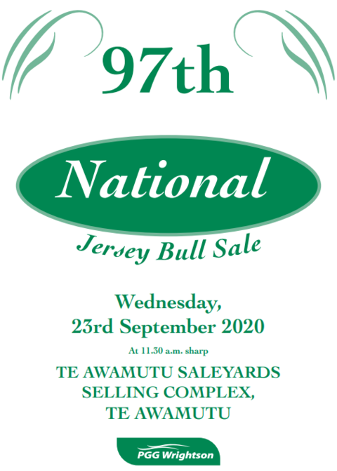 97TH NATIONAL JERSEY BULL SALE - TE AWAMUTU SELLING COMPLEX