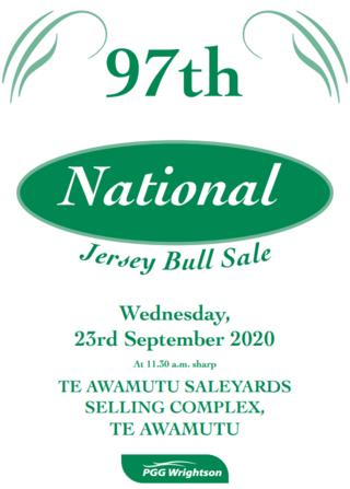 97TH NATIONAL JERSEY BULL SALE - TE AWAMUTU SELLING COMPLEX