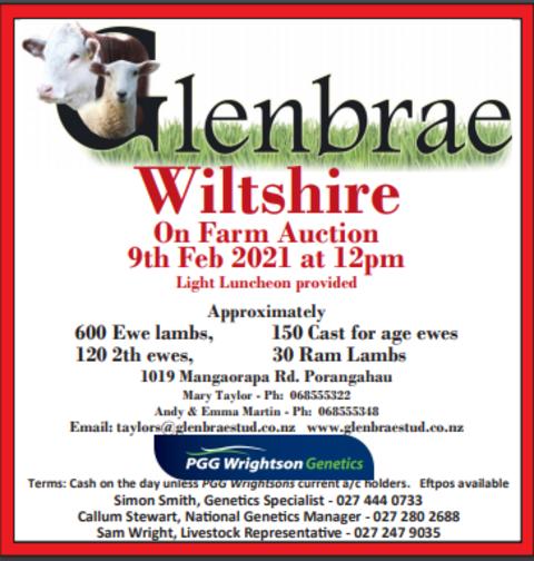 GLENBRAE WILTSHIRE ON FARM AUCTION