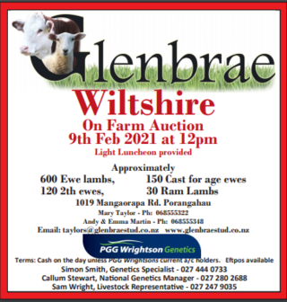 GLENBRAE WILTSHIRE ON FARM AUCTION