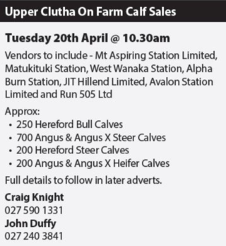 UPPER CLUTHA ON FARM CALF SALE