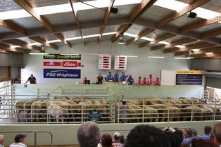 KAIKOHE WEANER SUPPLEMENTARY FAIR