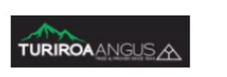 TURIROA ANGUS BULL SALE - WAIROA