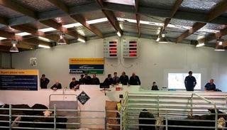 WELLSFORD PRIME, BONER & SHEEP SALE