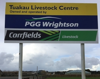 ((NO SALE TODAY - ALL TUAKAU SALES BACK TO NORMAL FROM NEXT WEEK))   -  TUAKAU STORE CATTLE SALE