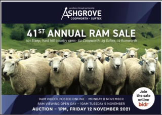 ASHGROVE COOPWORTH'S / SUFTEX RAM SALE