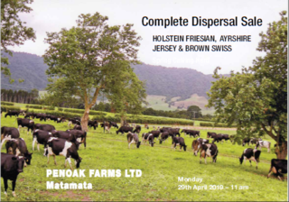 COMPLETE DISPERSAL SALE SPRING CALVING HERD & REPLACEMENTS - A/C: PENOAK FARMS LTD