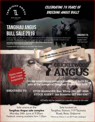 TANGIHAU / CRICKLEWOOD ANGUS BULL SALE - GISBORNE