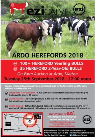 ARDO HEREFORDS YEARLING BULL SALE - MARTON