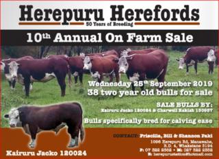 HEREPURU HEREFORD 2YR BULL SALE